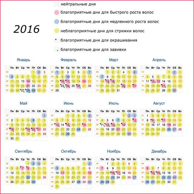 Как удачно подстричься по лунному календарю?